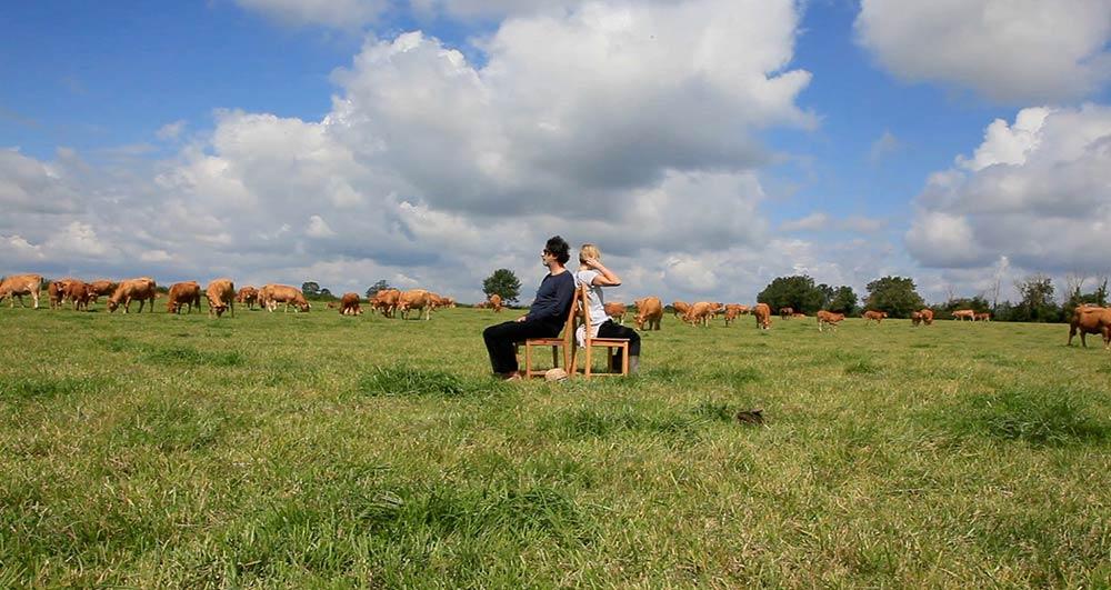 Performance chantons aux vaches